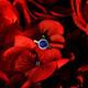1375015806 small thumb f07fd78db1aae9576e7e922a4f64846e