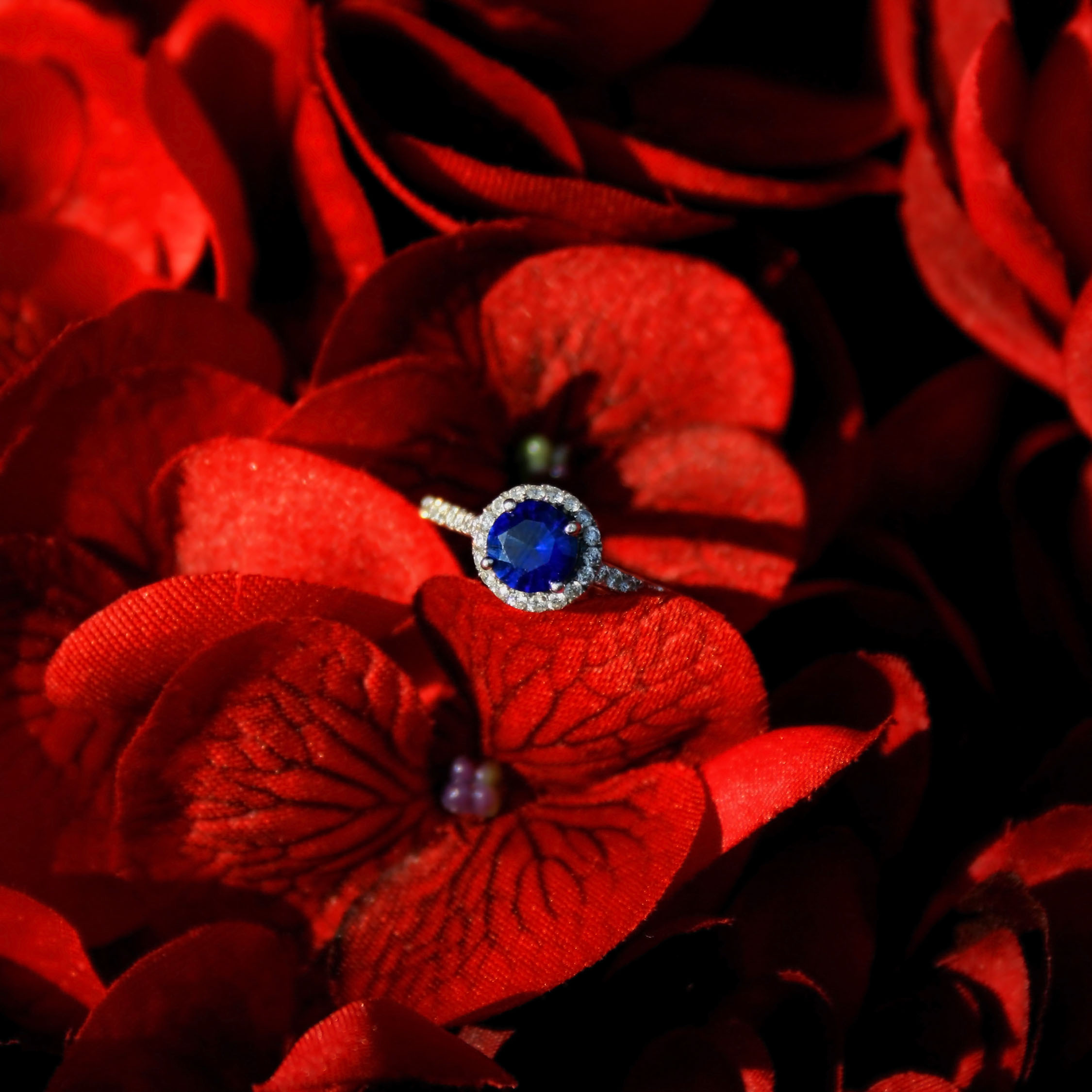 Flowers & Decor, Jewelry, red, blue, Engagement Rings, Flowers, Sapphire, Engagement ring