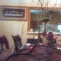 Manzanita branches by marina
