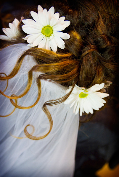 Beauty, Veils, Fashion, Bride, Veil, Hair, Daisy, Garden rose photography