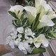 1375015951_small_thumb_f26e5bc11a17135f02bc26c4a76a489b