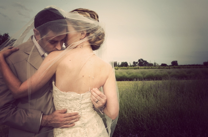 Veils, Fashion, purple, gold, Outdoor, Veil, Bear flag farm, Napa, Aubrey aaron, French wedding