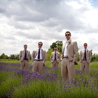 purple, gold, Groomsmen, Groom, Guys, Beige, Bear flag farm, Napa, Suits, Aubrey aaron, French wedding
