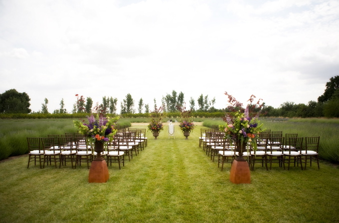 Ceremony, Flowers & Decor, purple, gold, Outdoor, Bear flag farm, Napa, Aubrey aaron, French wedding, Napa wedding