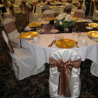 Decor, Chair, Sashes, Covers, Linens, Rentals, Chair covers sashes by party pros, Chair cover, Flowers & Decor