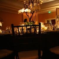 Reception, Flowers & Decor, Decor, green, brown, Flowers, Orchid, St, Regis