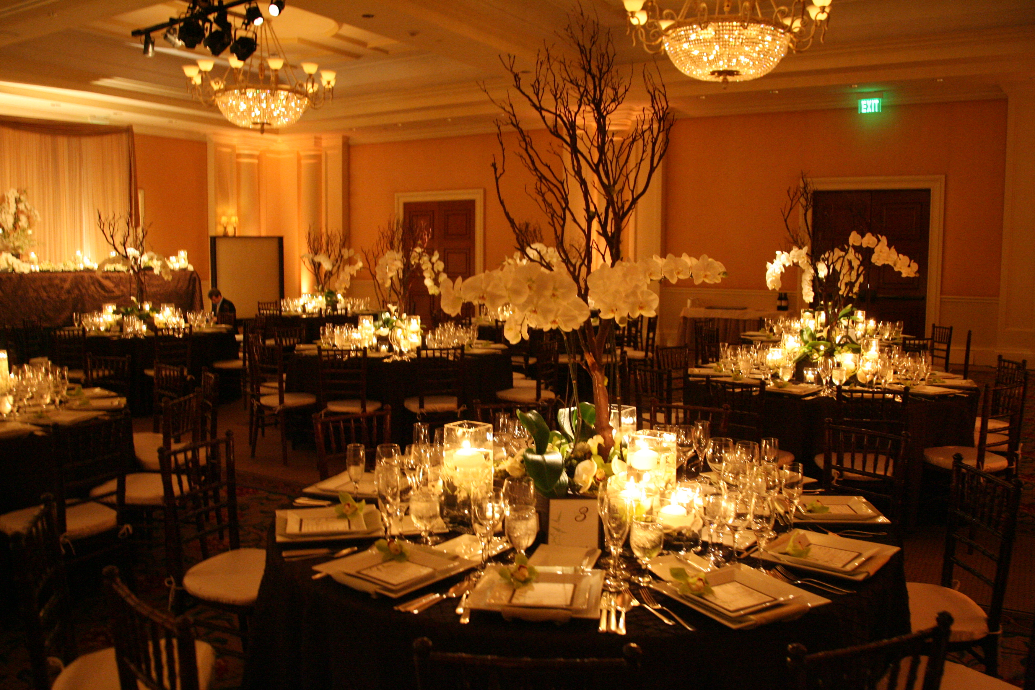 Reception, Flowers & Decor, Decor, green, brown, Flowers, Orchid, St, Regis