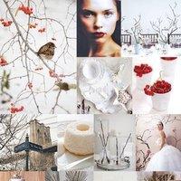 Inspiration, white, red, Winter, Board