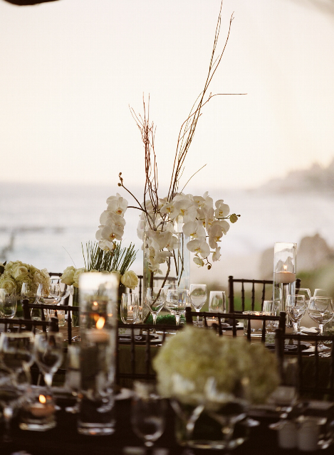 Reception, Flowers & Decor, Decor, Destinations, white, Mexico, Beach, Centerpieces, Flowers, Beach Wedding Flowers & Decor, Modern Wedding Flowers & Decor, Centerpiece, Orchid, Destination, Seaside