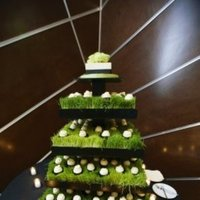 Cakes, cake, Cupcakes, Joyful weddings events