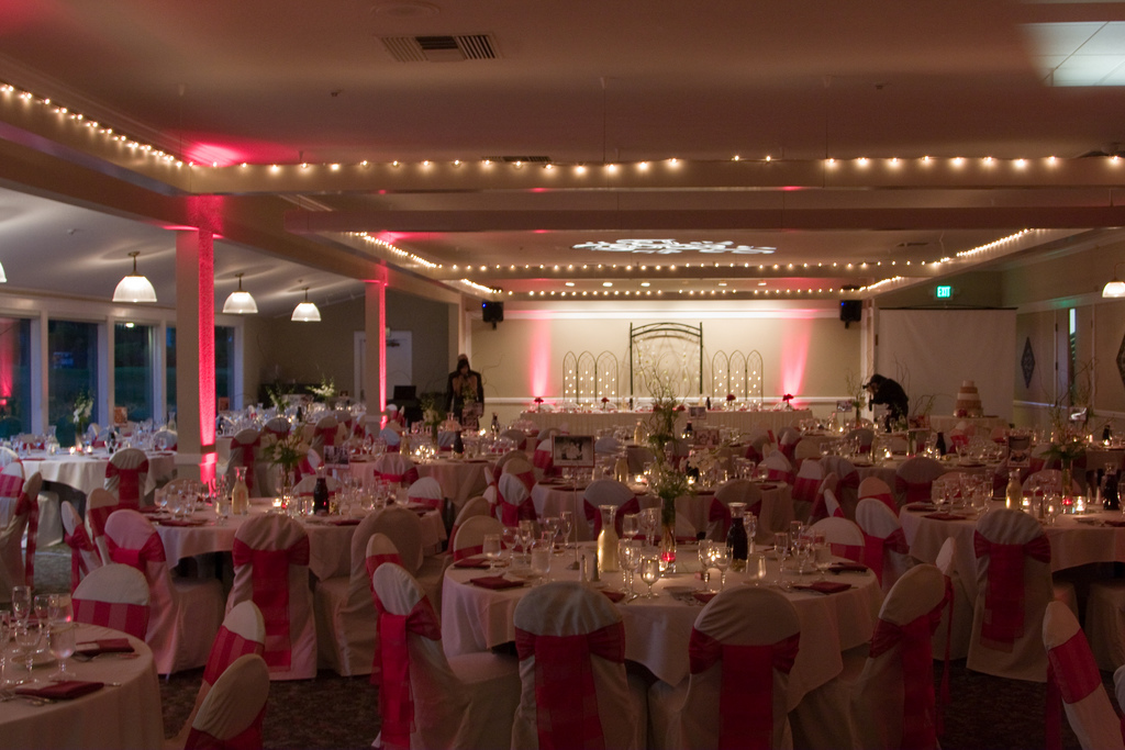 Reception, Flowers & Decor, red, Flower, Events by karen lee