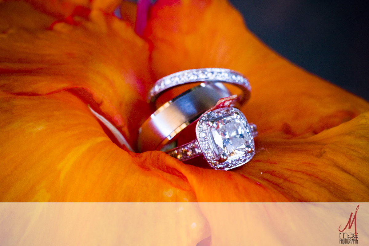 Flowers & Decor, orange, Flowers, Ring, Mae photography