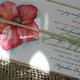 1375016640_small_thumb_d4d6e1f5ca9a9813b84ba590de5ee518