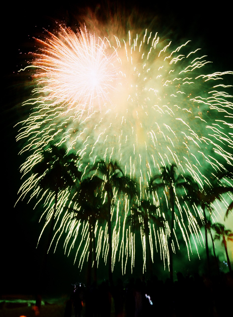 Reception, Flowers & Decor, Decor, Destinations, white, green, Mexico, Beach, Beach Wedding Flowers & Decor, Destination, Michelle nathan, Fireworks
