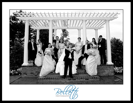 Bridesmaids, Bridesmaids Dresses, Fashion, Groomsmen, Bride, Groom, Wedding party, Group, Belletti photography
