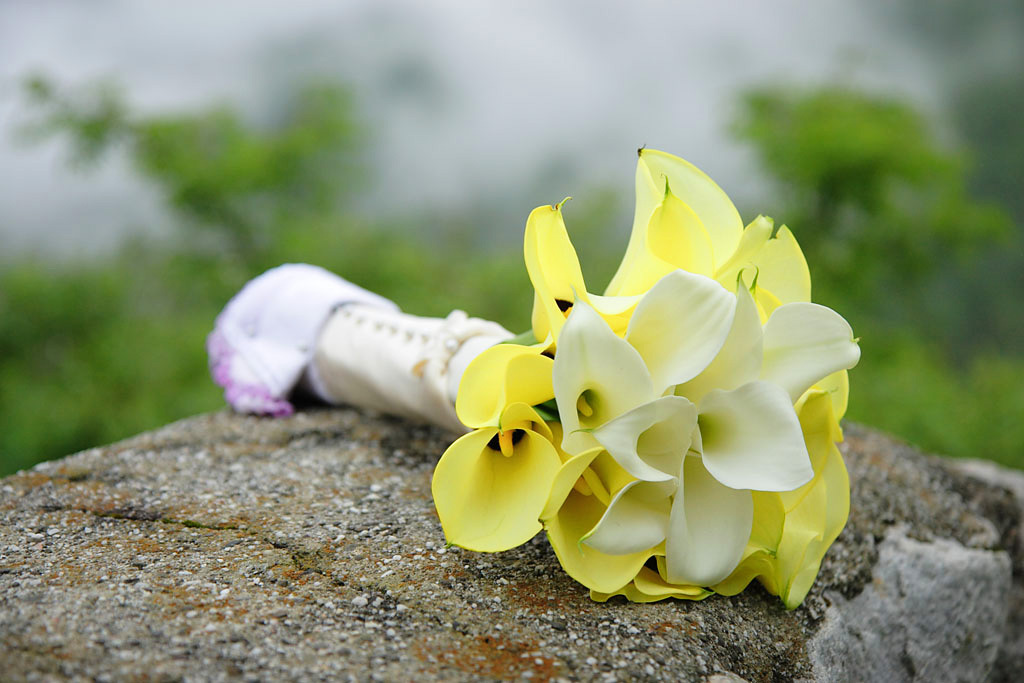 Flowers & Decor, white, yellow, Flowers, Wedding, Calla, Lily, Ulysses photography