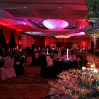 Reception, Flowers & Decor, Decor, Lighting, Buffet, Linen