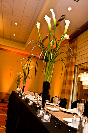 Reception, Flowers & Decor, Flowers, Bliss weddings events