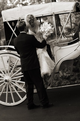 Reception, Flowers & Decor, Bride, Groom, Transportation, And, Weddings, Horse, Carriage, Whimsical, Whimsical weddings