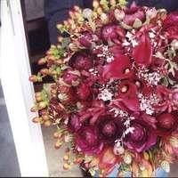 Flowers & Decor, red, Bride Bouquets, Flowers, Bouquet, Bridal, Brook howell, Biedermeier