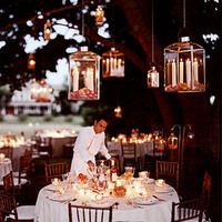 Reception, Flowers & Decor, Lights, Decoration