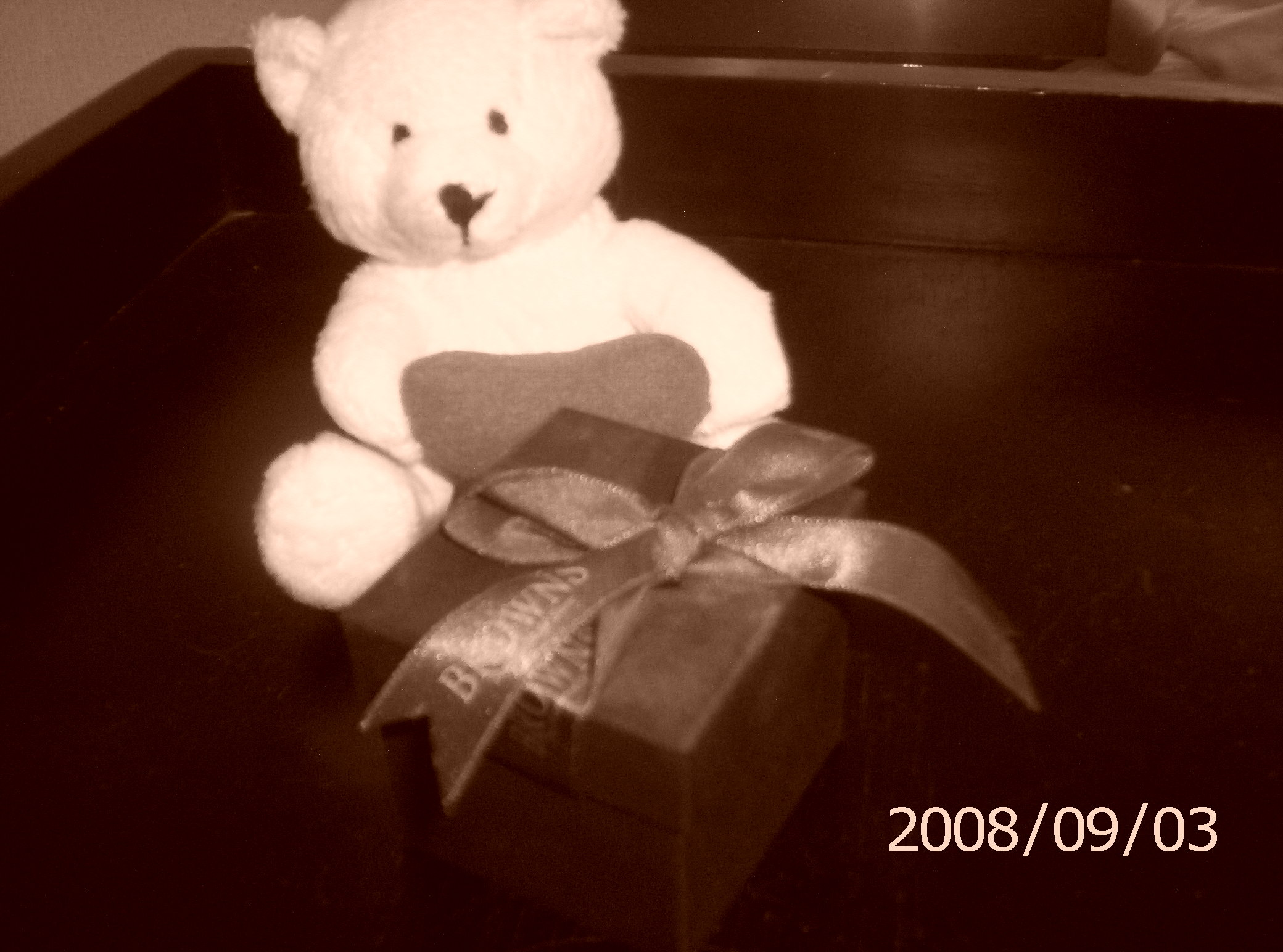 Ring, Box, Teddy