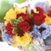 Flowers & Decor, yellow, Outdoor, Flowers, Wedding, Hydrangea, Iris, Event-full moments, Chocolate cosmo, Event design, Leonidas, Dark red
