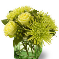 Centerpiece, Green flowers