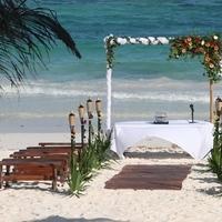 Flowers & Decor, Beach, Flower, Site, Bamboo, Sea, Settings, Canopy, Weddings riviera maya
