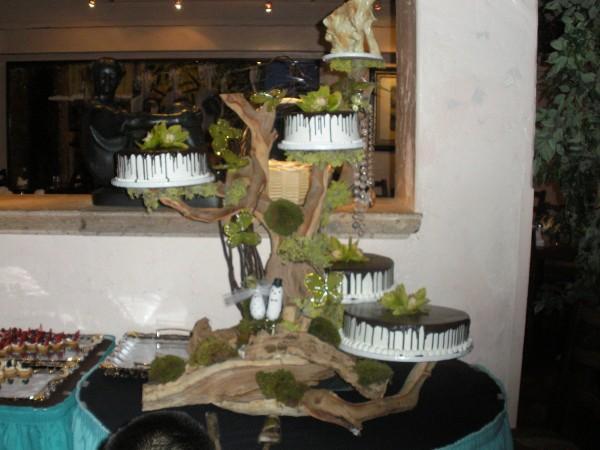 Cakes, green, brown, cake, Branches, Birds, Chocolate, Orchids, Manzanita