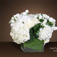Flowers & Decor, white, Square, Flowers