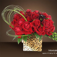 red, Rose