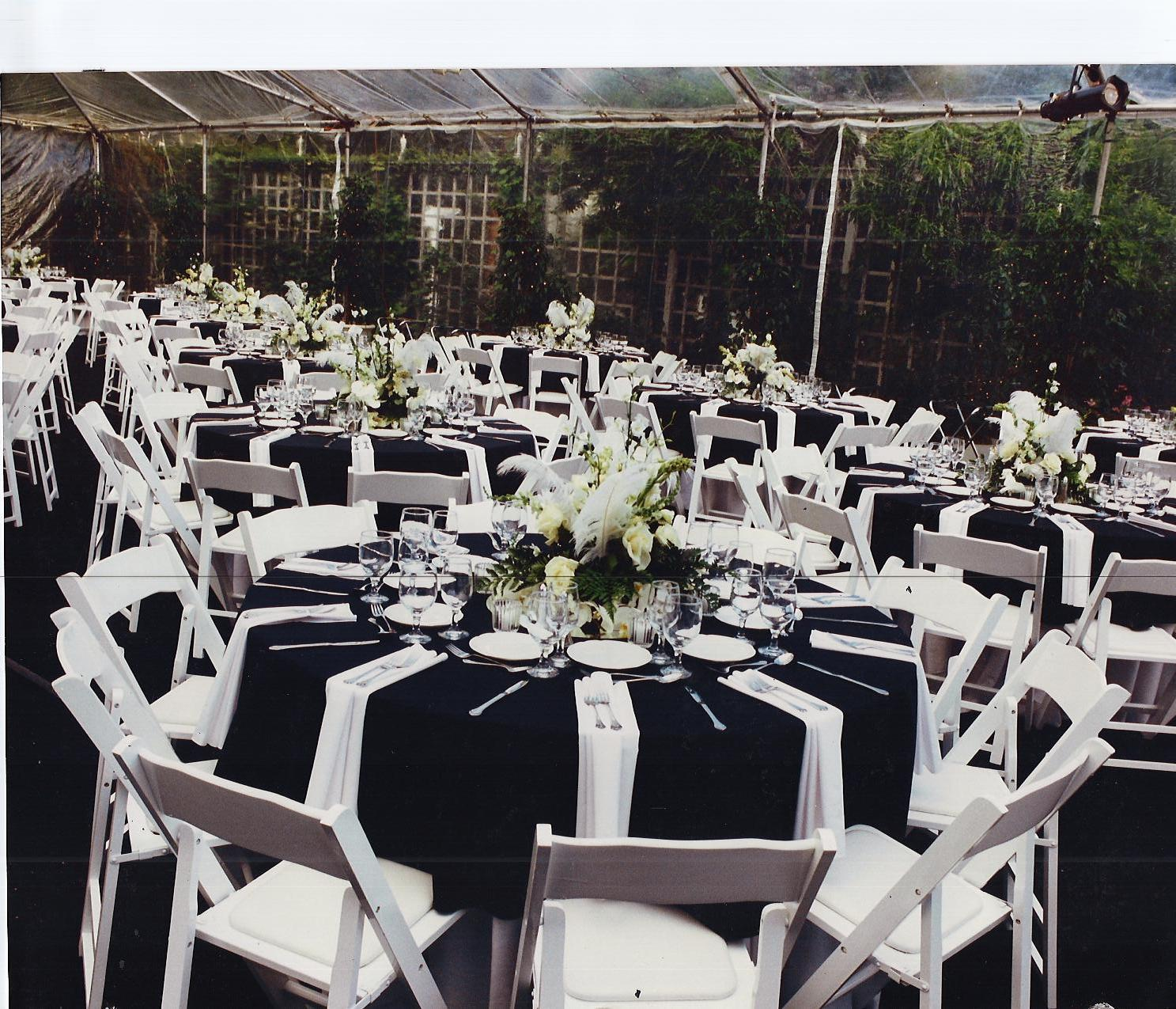 Wedding Reception Chair Rental: Tented Wedding Reception Clear Top Tent Amp White Wood