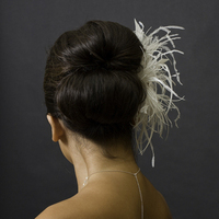Beauty, Feathers, Fascinator, Feather, Qgdesigns
