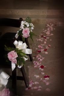 Rose, Petals, Aisle