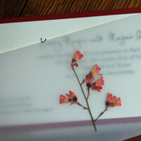 Stationery, red, gold, invitation, Invitations, And, Invitations by alecia