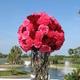 1375018772 small thumb 3b7e484bc519df03d0fd518656d58782