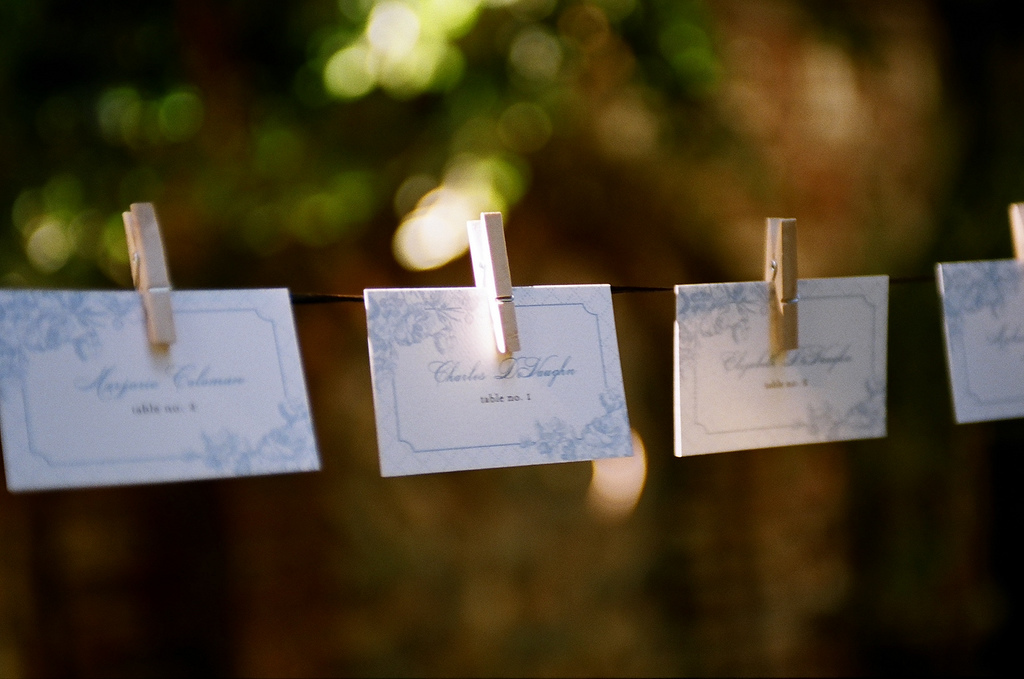 Stationery, ivory, blue, brown, Escort Cards, Floral, Hanging, Stationary, Clothespin