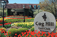 Cog hill golf country club