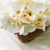 Flowers & Decor, Bride Bouquets, Flowers, Roses, Bouquet, Orchids
