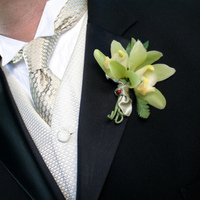 Flowers & Decor, Boutonnieres, Flowers, Orchids, Boutonniere, Cymbidium, The blue orchid