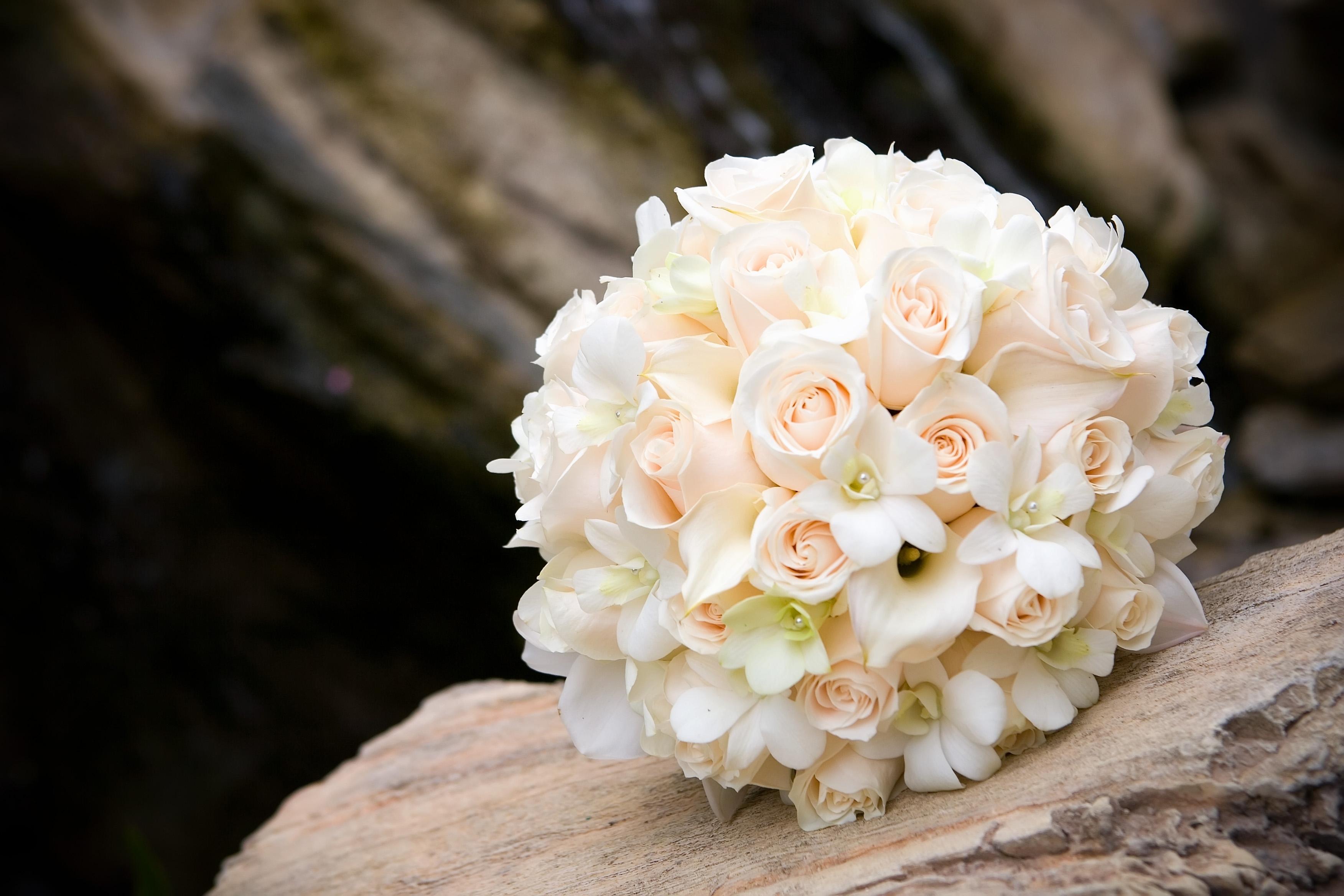 Flowers & Decor, Flowers, Lola