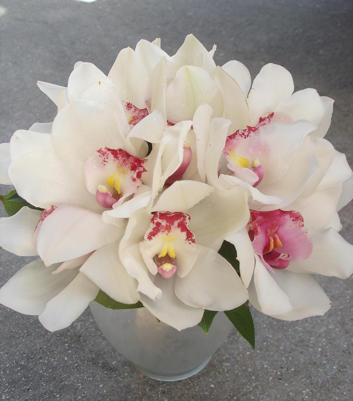 bridal bouquet, Flowers by fudgie, Orhcids