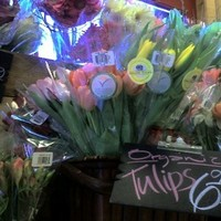 Flowers & Decor, Flowers, Wedding, Organic, Trader joes