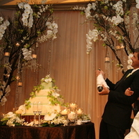 Reception, Flowers & Decor, Decor, Cakes, green, brown, cake, Flowers, Orchid