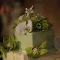Flowers & Decor, Decor, Cakes, green, brown, cake, Flowers, Orchid
