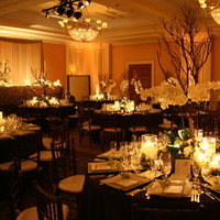 Reception, Flowers & Decor, white, ivory, green, brown, Centerpieces, Orchid, Wedding, Asian, Champagne