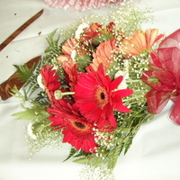 Flowers & Decor, burgundy, Bride Bouquets, Flowers, Bouquet, inc, Weddings by stephanie