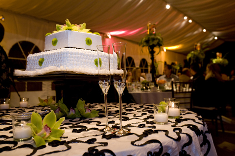Reception, Flowers & Decor, Cakes, green, black, cake