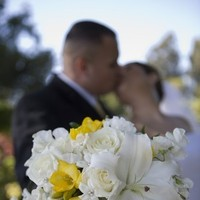 Flowers & Decor, white, yellow, Bride Bouquets, Flowers, Roses, Stephanotis, Bouquet, Lilies, Bridal, Love in bloom, Handtied, Freesia